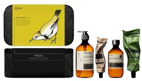 Aesop skin care kit,