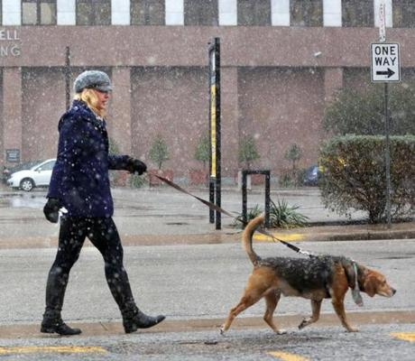 Kamela Kolander walked her dog in a snowstorm in downtown Dallas on Tuesday.