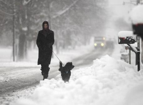 A woman walked a dog as snow fell in Carbondale, Ill., on Wednesday.