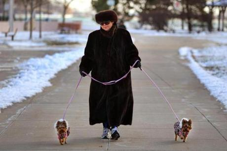 Linda Connors of South Boston bundled up to walk her two Yorkshire terriers, Mimi and Missy, along Day Boulevard.