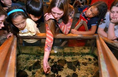 You can have a hands-on experience at the EcoTarium in Worcester.