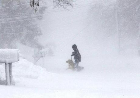 Snow whipped around a boy and his dog in Marshfield.