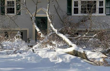 A tree fall on a home on Main Street in Hanover.