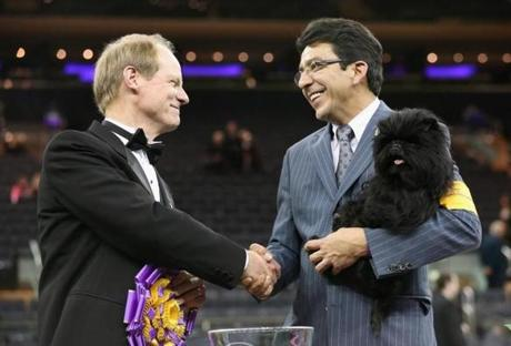 Best in Show judge Michael Dougherty, left, congratulates dog handler Ernesto Lara after his dog Banana Joe, an Affenpincher, won the 137th Westminster Kennel Club Dog Show. Affenpincher is from Attleboro, Mass.