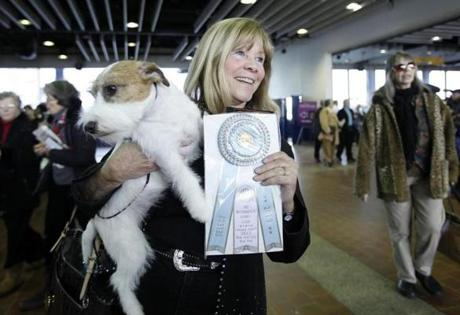 Sue Sobel holds up Maddy, a Russell terrier who won the Winners Bitch during the 137th Westminster Kennel Club Dog Show in New York, February 12, 2013. More than 2,700 prized dogs will be on display at the annual canine competition. Two new breeds, the Russell terrier and the Treeing Walker coonhound, will be introduced in the contest. REUTERS/Carlo Allegri (UNITED STATES - Tags: ANIMALS SOCIETY)