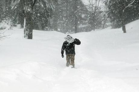 Erik Hajer headed slowly up an impassable Ridge Road in Waban, as residents struggled to dig out after the storm.