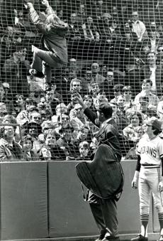 April 17, 1972: Twelve year old Bobby Tingle of Cambridge scrambled up the screen behind home plate to retrieve a baseball that had been caught on a wire at the top of the screen. Chief Umpire Bill Haller was waiting for him when he climbed down and turned him over to officials who called his parents to come get him. To make matters worse, Bobby didn't even get the ball. The Red Sox officials took it away.