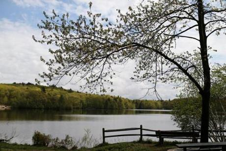 The Hale Reservation offers runners and walkers a great location.