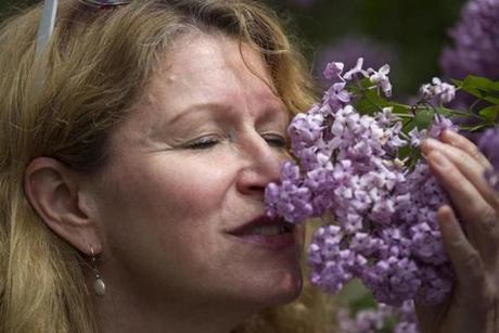 Roanna Bamford of Hull savored the scent of lilacs during Lilac Sunday at the Arnold Arboretum in Jamaica Plain.