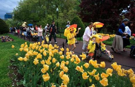 "Hundreds of fans of the children's book ""Make Way For Ducklings"" made their way toward the famous duckling statues in the Public Garden for the annual Duckling Day event."