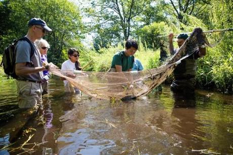 Tim Gray of Bedford, (left) Susan Erickson of Concord,  Meghna Marjadi, Andy Xin of Bel Air, MD and Brian Windmiller held a net that was used to scoop up water from the brook and contains different species of fish.
