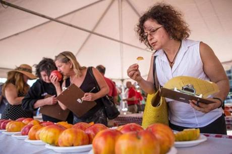 Carolyn Faye Fox of Improper Bostonian, judging heirlooms.