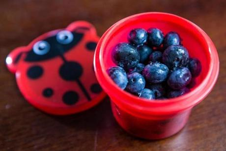 A snack pack by Sproot, containing blueberries.