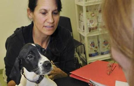Trish Bosco of Winthrop adopts Juno as Sunniva Buck reviews the paperwork at Gloucester's Christopher Cutler Rich Animal Shelter.