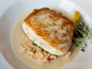 Pan Roasted Halibut is served at the newly renovated Forum Bar and Restaurant in Boston.
