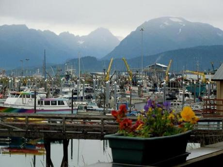 View from the docks of fishing boats in Valdez, Alaska, August 2013.