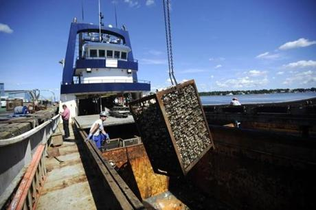 A container of clams was unloaded from the Sea Watcher 1 in New Bedford.