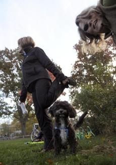Diane Healy, left, her dog Astar, and dog trainer Joy Wrolson stretched during a Fit Doggie and Me class.