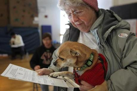 At the Oak Square YMCA Sarah Oliver voted with her rescue Chihuahua, Dixie.
