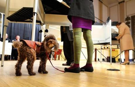 Voters filled the Franklin Institute polling place on East Berkley Street in the South End. Rupert waited while his owner, Maureen Russell from the South End, voted.