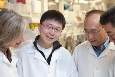 Feng Zhang, with (from bottom left) Kevin Bitterman, George Church, and J. Keith Joung, are starting Editas Medicine.