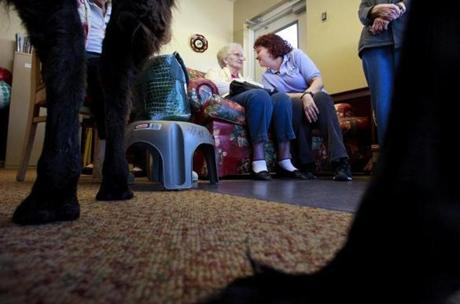 Activity coordinator Irene Hudson, right, talked with resident Marjorie Bontempo during a visit from Travis the llama (also a resident) at Life Care Center of Nashoba Valley in Littleton.