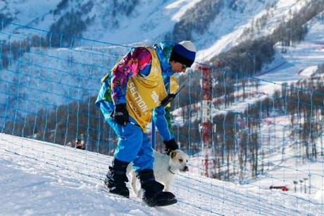 A Winter Games worker led a dog off a snowboarding course during a training session Tuesday in Sochi.