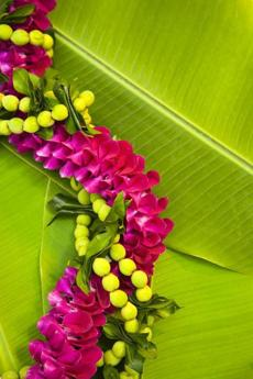 An orchid lei on banana leaves.