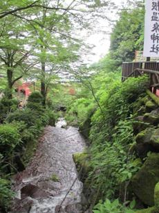 Hotel Kowakien is known for its gardens and hot-spring-fed pools.
