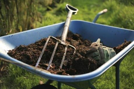 Compost provides beneficial nutrients for your lawn.