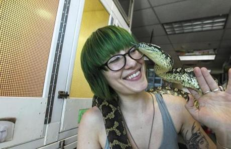 Employee Alana Hess with a reptile friend at the Plaistow, N.H., facility.
