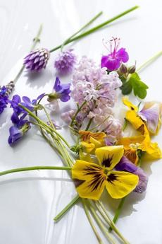 TIP: Old salmagundi recipes often use edible flowers as a garnish. Squash blossoms, pansies, nasturtiums, and the blossoms from chives, lavender, or basil are all edible. You can find them at farmer's markets and some grocery stores.