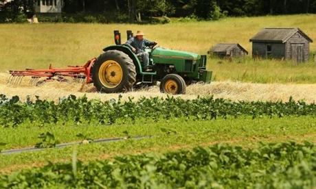 A tractor pulls a rake to gather hay at Hanson Farm.