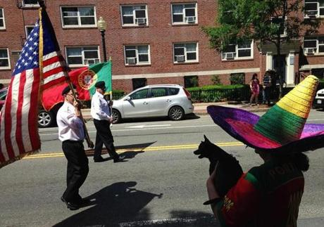 Maria Barao wore a sombrero and held her Chihuahua, Buddy, as they watched the Portuguese Festival Parade in Somerville on Sunday afternoon.