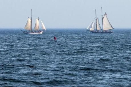 07/01/2014 GLOUCESTER, MA Two large sailboats crossed paths outside Gloucester Harbor (cq). (Aram Boghosian for The Boston Globe)