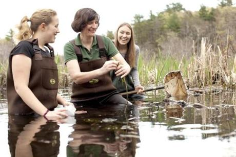 Dorothy Boorse, shown with some students, teaches courses in biology and environmental science at Gordon College, a Christian school in Wenham.