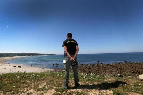 Nate Cristofori, a Plymouth natural resources warden, surveyed Manomet beach on Tuesday amid worries over sharks.