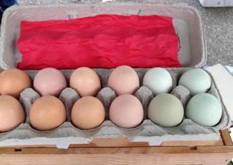 01travnh - Paint Box carton of eggs from Mona Farm. (Lisa Zwirn)