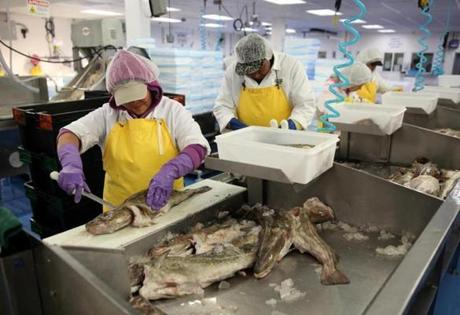 Workers processed fish at Great Eastern Seafood in the Boston Food Market.