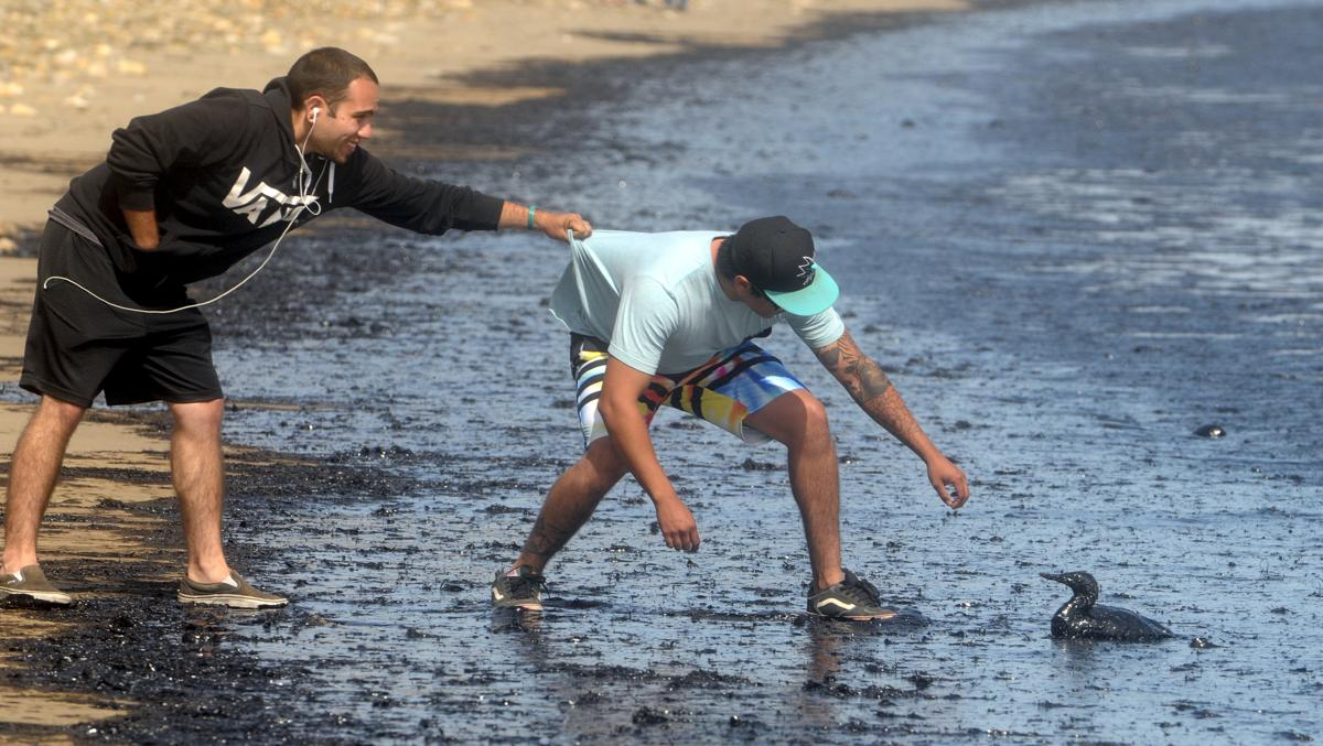 oil spill in california the boston globe oil spill in california