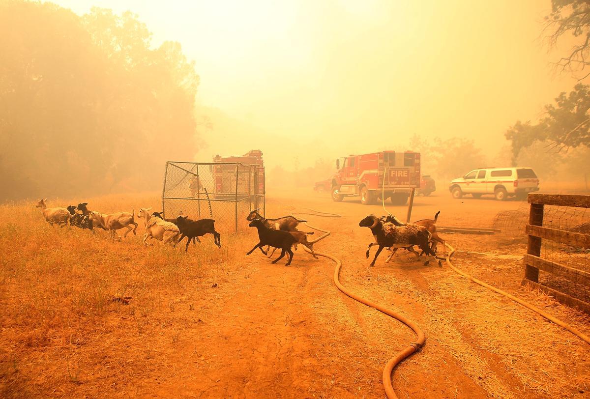Espectaculares fotos de los incendios de California 482549348