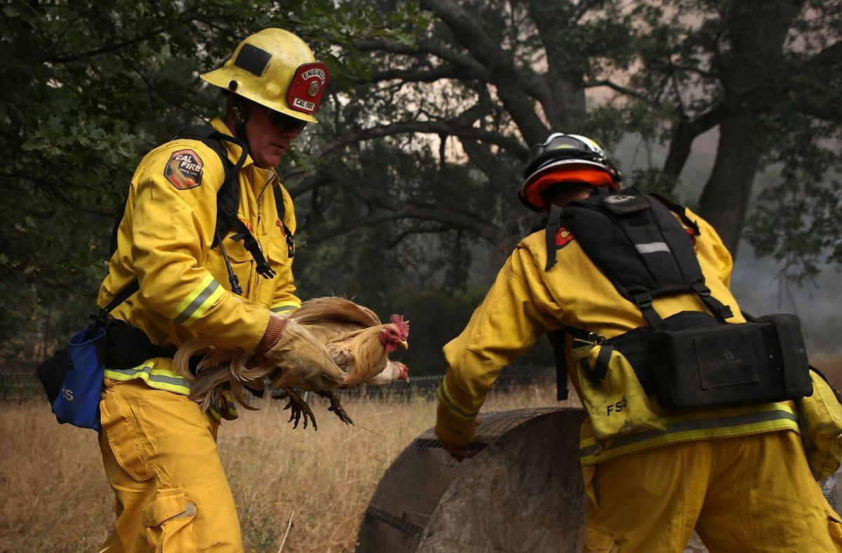 Espectaculares fotos de los incendios de California 482549356
