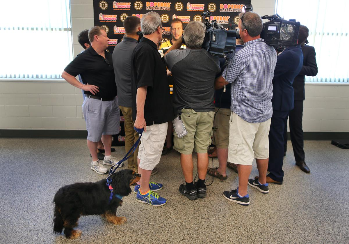 Dog Days In Boston Suits New Bruin David Backes Just Fine