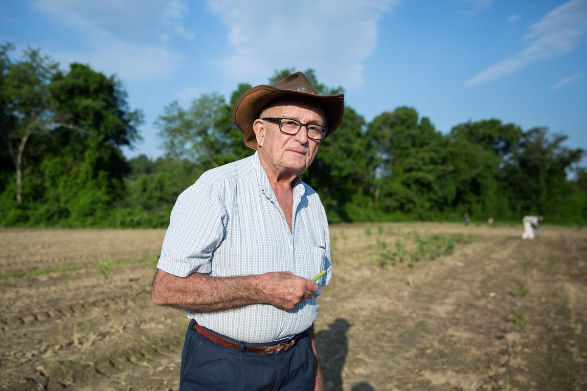 06/12/17 -- Concord, MA -- Owner and farmer Steve Verrill poses for a portrait in the asparagus fields at Verrill Farm on June 12, 2017, in Concord, Massachusetts. (Kayana Szymczak for The Boston Globe)