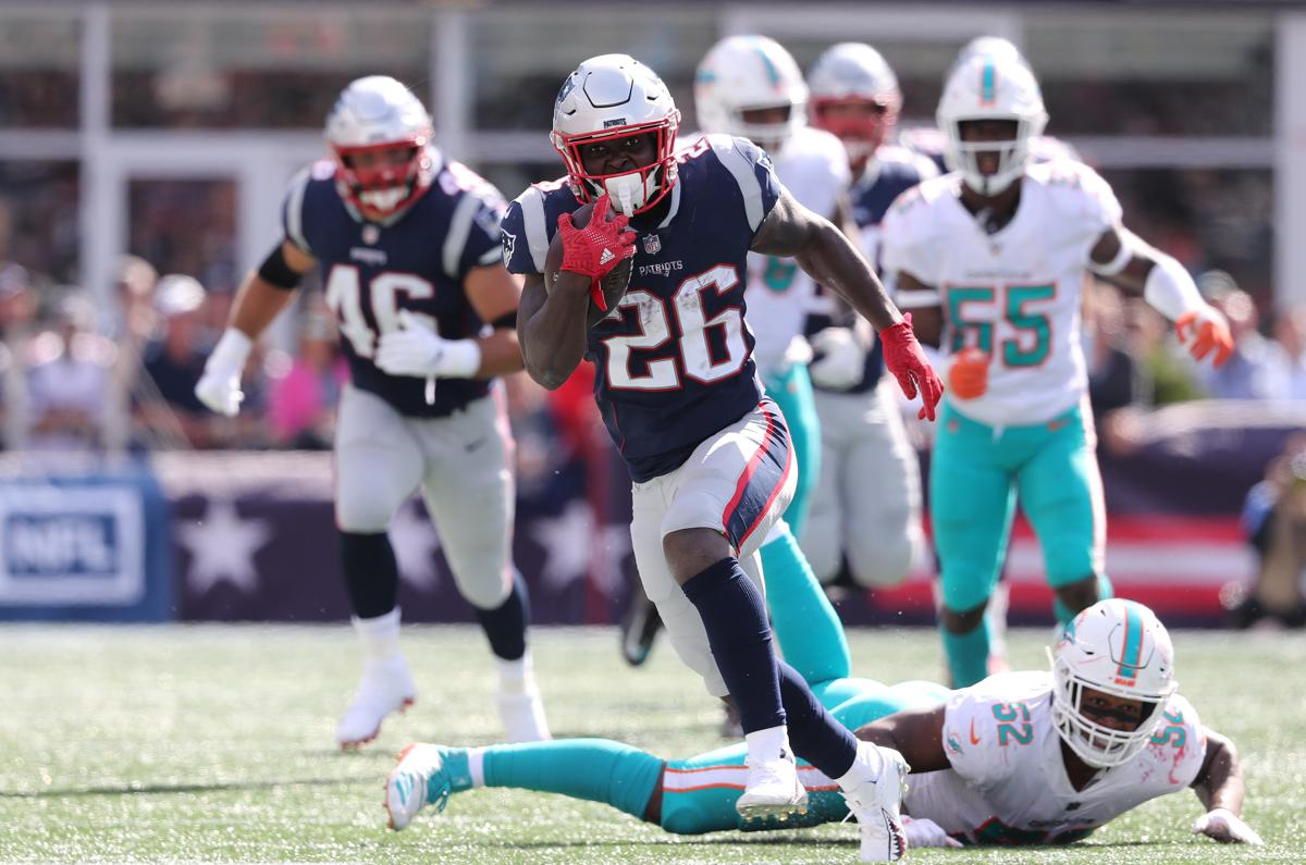 Image result for sony michel dolphins