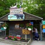 The Maine Wildlife Park is home to animals unable to fend for themselves in the wild.