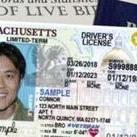Sample of a Massachusetts Real ID license from the RMV website.