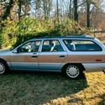 On Dec. 6 the Freetown Police Department shared a photo of a station wagon with a tree on its roof and a cutout of Chevy Chase in the driver's-side window.