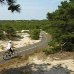 A woman raced down a steep hill on a path through the sand dunes of the Cape Cod National Seashore park in Provincetown, where Mary Oliver lived and wrote.