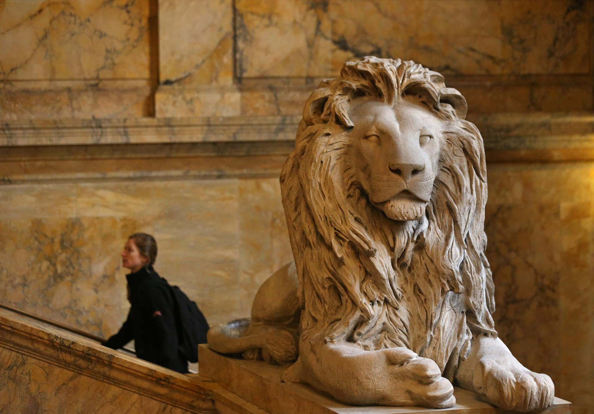 One of two lions on guard at the Boston Public Library in Copley Square. The lions are made from unpolished Siena marble by sculptor Louis Saint-Gaudens. They are memorials to the Second and Twentieth Massachusetts Civil War infantry regiments.